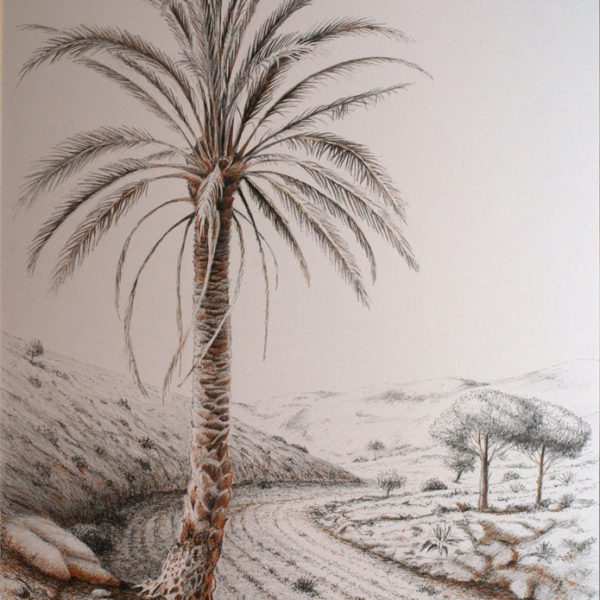 Palmera|Tinta| José Cerezo